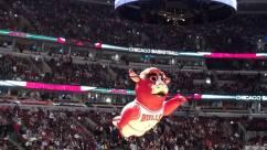 Chicago-Bulls-United-Center