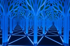 Numbers-in-Nature-Mirror-Maze-and-the-Museum-of-Science-and-Industry-Chicago